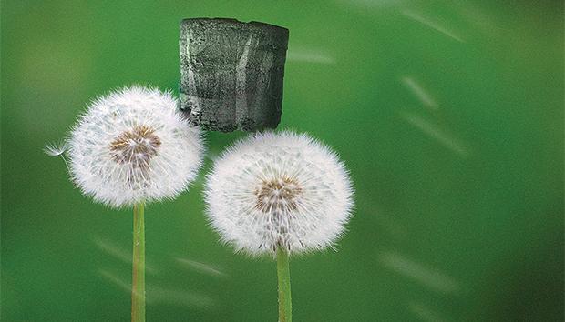 El aerogel de grafeno es considerado el material más ligero del mundo.