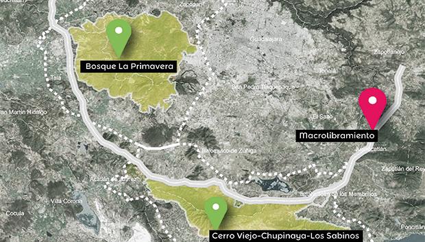 El proyecto del Macrolibramiento de Guadalajara dañaría gravemente a La Primavera