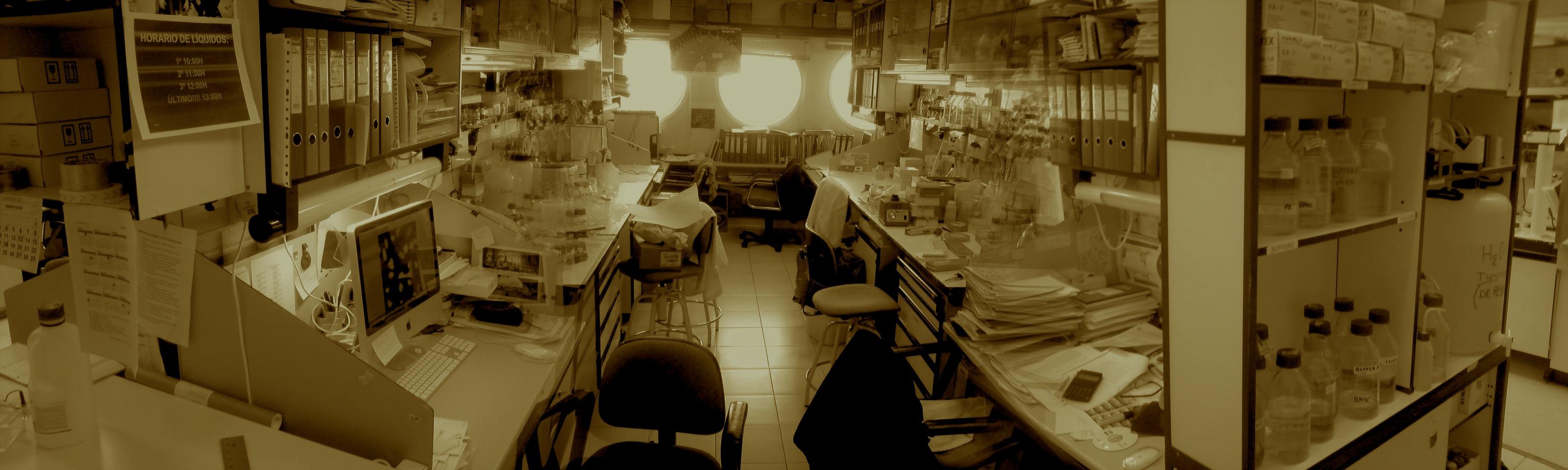 Foto tomada de sonicando.com