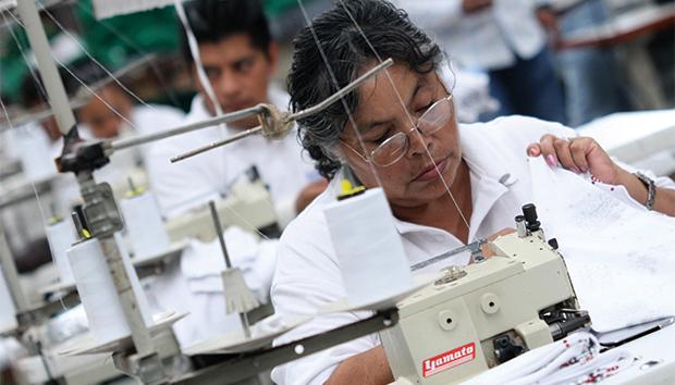La nueva carrera busca educar a los estudiantes en todos los pasos de la cadena de producción.