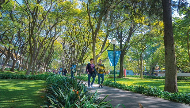 La Universidad se distingue por su apuesta ecológica. Foto: Carlos Días Corona