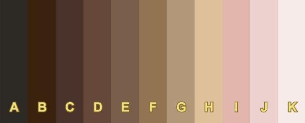Escala de color utilizada para la encuesta del INEGI sobre pigmentocracia.
