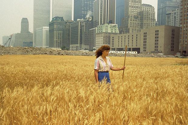Trigal: Una confron-tación. Battery Park Landfil, en el centro de Manhattan, con la artista en el campo.