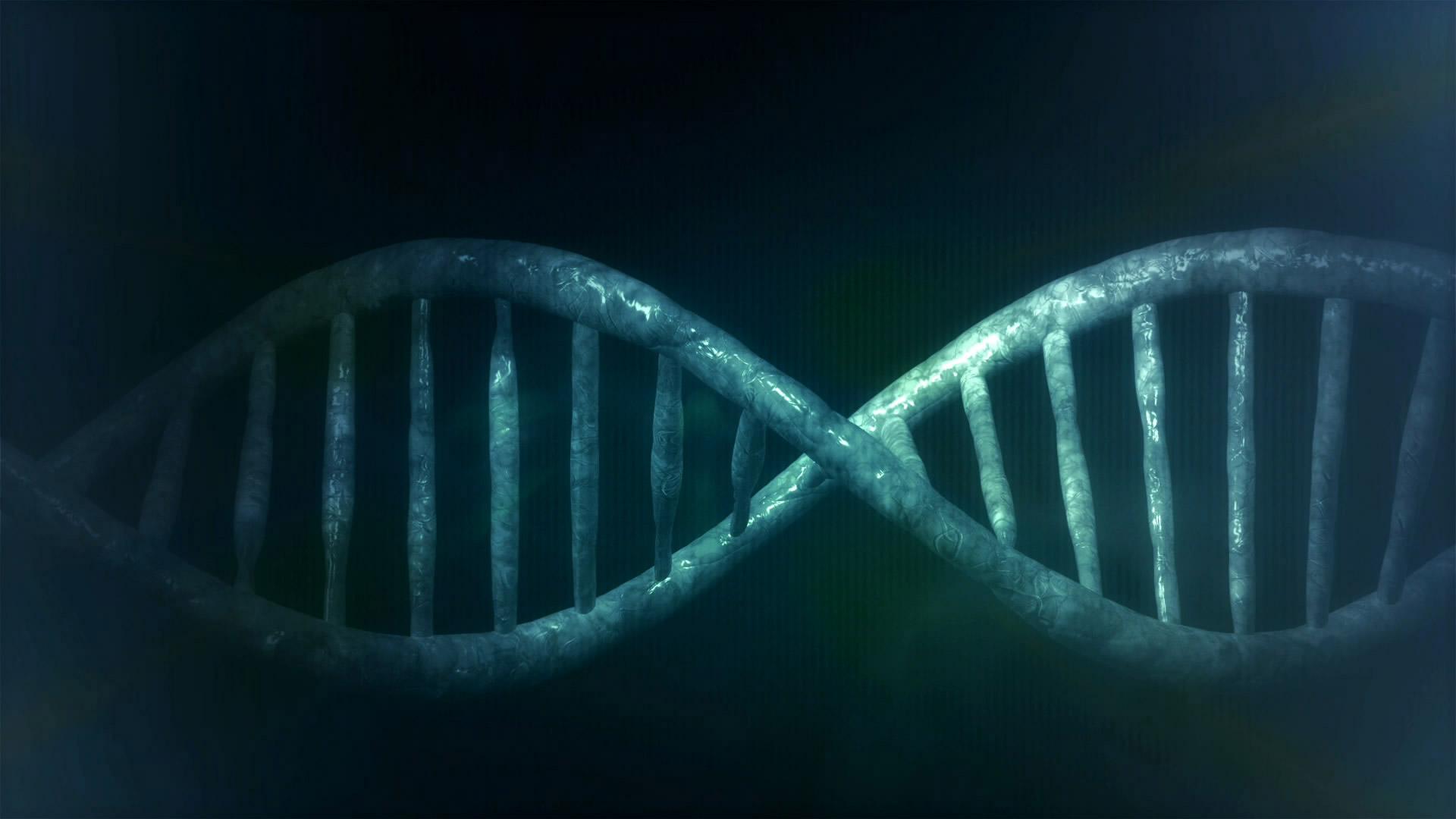 Las mutaciones genéticas ocurren de manera azarosa.